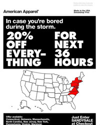 American Apparel's Sandy 'storm sale' ad