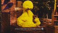 Big Bird in Barack Obama campaign ad