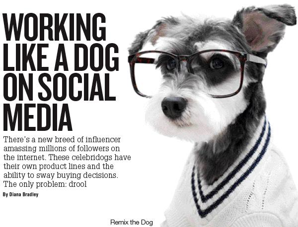 Working Like a Dog Social Media