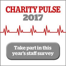 charity pulse 2017