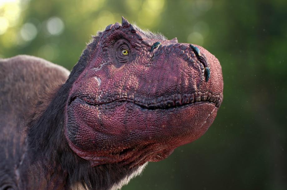 Dinosaurs in the Wild attraction to open this summer