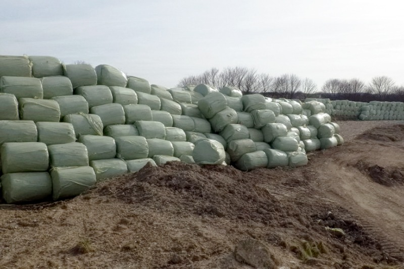 Piles of illegally dumped RDF bales